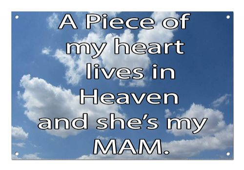 A Piece of Heaven Lives in Heaven She's My Relation Brushed Aluminium Metal Sign